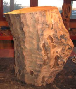 Windshake Walnut vertical stump.  No more than a slight glimmer in Pollitt's imaginative eyes for his wood sculpture, Morph II